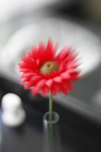 un fleur