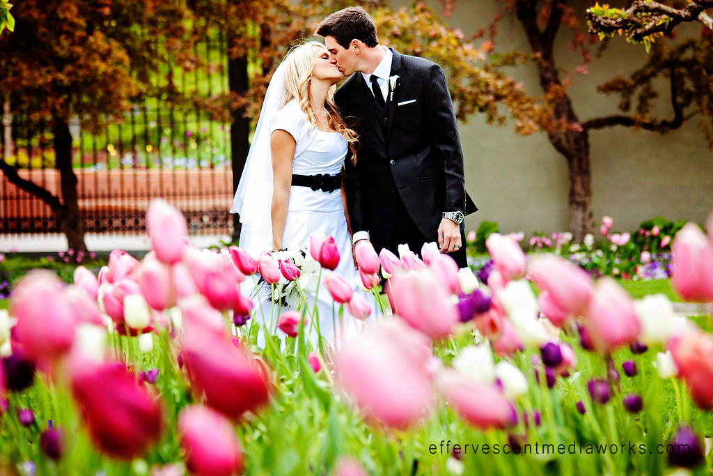 wedding photography utah