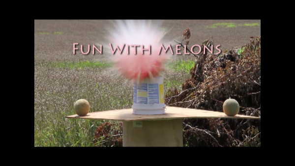 Fun With Melons