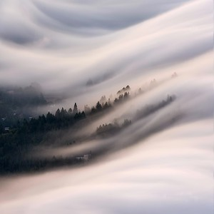 tam fog flow abstract