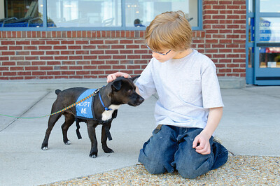 20110312 PetSmart Adoption Event-51