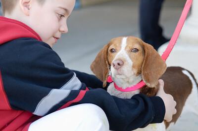 20110312 PetSmart Adoption Event-57