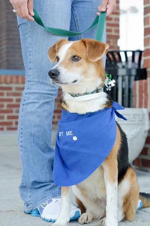 20110312 PetSmart Adoption Event-17