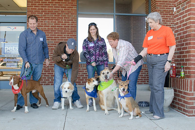 20110312 PetSmart Adoption Event-31