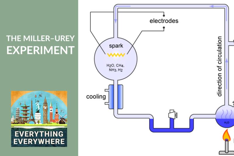 The Miller–Urey Experiment