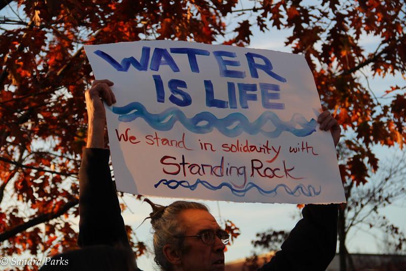 Standing Rock Solidarity #noDAPL, Harrisonburg VA