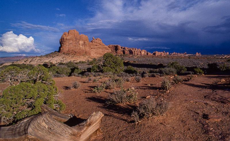 Arizona Butte
