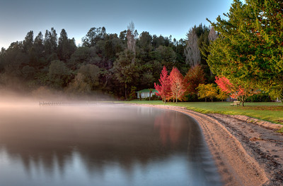 Misty morning at Lake Rotoiti, North Island, New Zealand