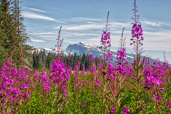 Mt. Slope, Lake Clark National Park