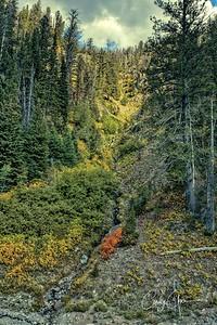 Autumn in Yellowstone