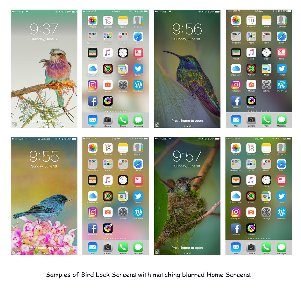 Click to enlarge. The icon on the far right at the bottom of the screen shows various sizes.