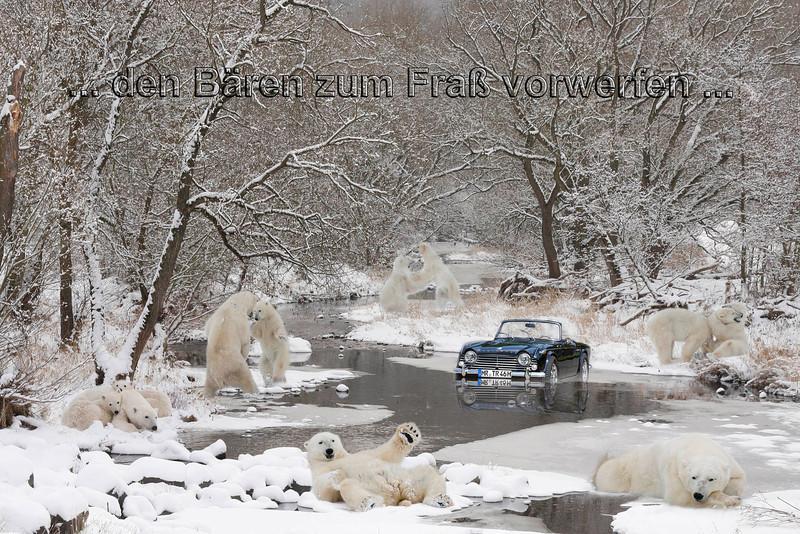 Die Niederlage... dann endlich versenkt + den Bären zum Fraß vorgeworfen... :)
