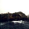 1996-08-15 - In the ocean near Tofino, BC, Canada