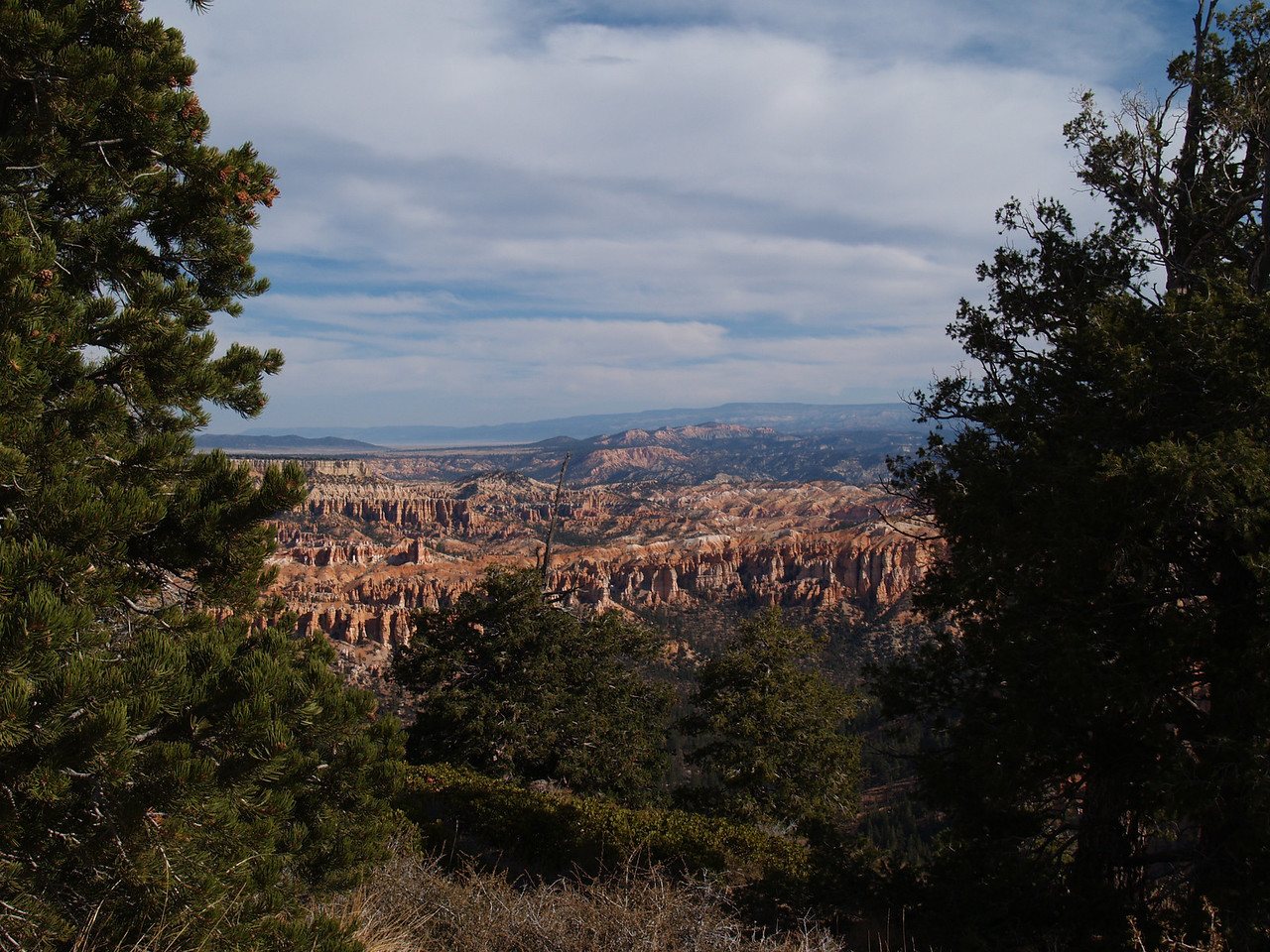 2005-10-17 - Bryce framed by trees