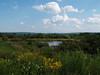 2008-08-30 - Ithaca - Eco Village - View into pond
