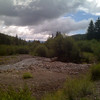 2010-08-03 - Crested Butte - Mill Creek Trail