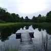 2010-06-05 - Pond at Kersting's near Springwater, NY