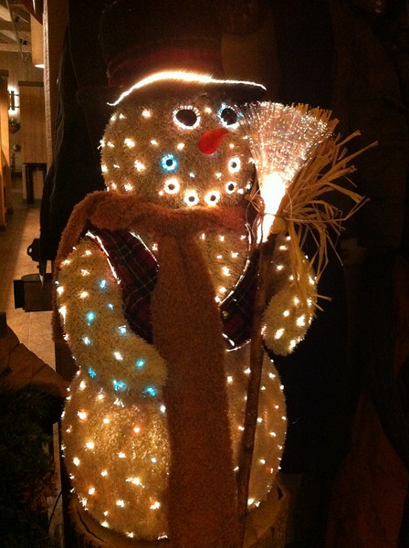 2010-12-28 - Gingerbread Man at Peaks of Otter Lodge in Virginia on the Blueridge Parkway near Roanoke, VA, USA jpg