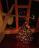 2012-12-19 - Christmas tree at 906 Triphammer Rd