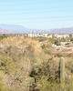 2012-01-01 - View from Phoenix Botanical Garden toward Sky Song in Tempe, AZ, USA