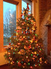 2012-12-17 - Christmas tree at 906 Triphammer Road