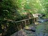 2012-05-28 - Fillmore Glen State Pakr 02 - Man-made and Natural