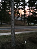 2012-01-28 - Sunrise in front of 906 Triphammer Rd, Ithaca, NY, USA