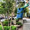 2013-08-13 - Rain garden 02 - 81 Vine St, Seattle, WA, USA