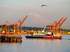 2013-07-29 - Victoria Clipper arriving in Seattle and Mount Rainer in the background and bird in the sky