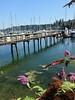 2013-07-20 - Eagle Harbor at Bainbridge Island, WA, USA