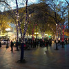2013-11-11 - Holiday lights installed at Westlake Plaza in downtown Seattle, WA, USA