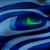 2014-01-19 - Close up of Seahawks logo