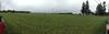 2014-03-04 - Doelman Farm 01 - Tumwater, WA, USA