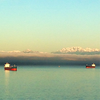 2014-03-12 - Sunny morning on Elliott Bay with the Olympic Mountains in the Background