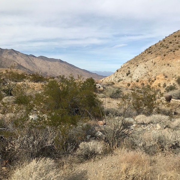 2018-01-01 - Photo 09 - Agua Caliente Indian Canyons