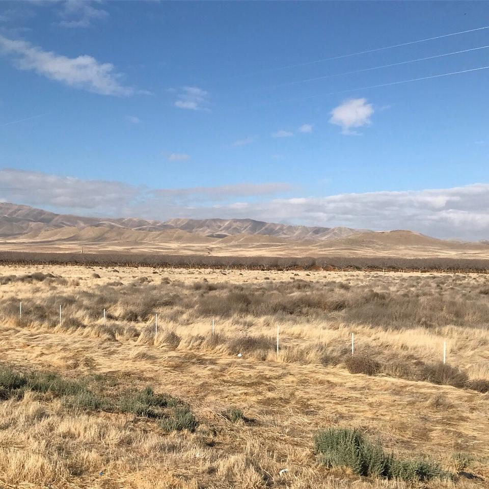 2018-01-04 - Photo 08 - San Joaquin Valley, CA, USA