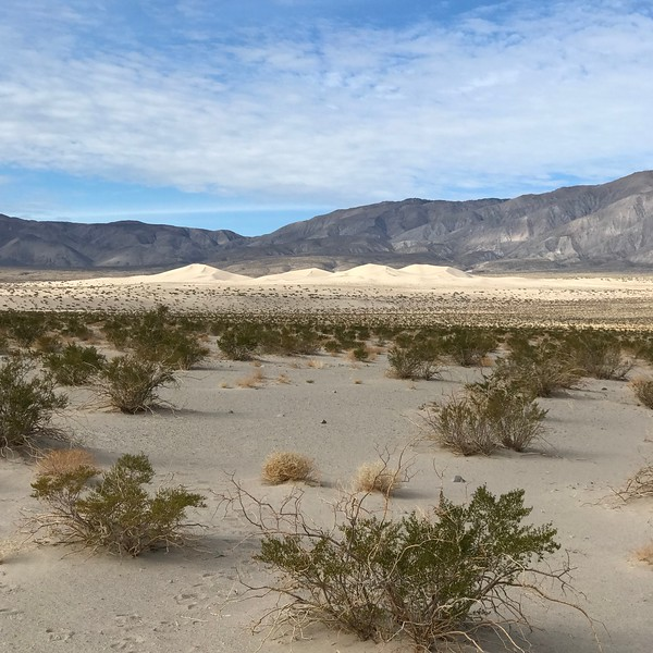 2018-01-03 - Photo 08 - Death Valley - Panamint Dune