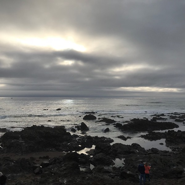2018-01-04 - Photo 13 - Cambria, CA, USA