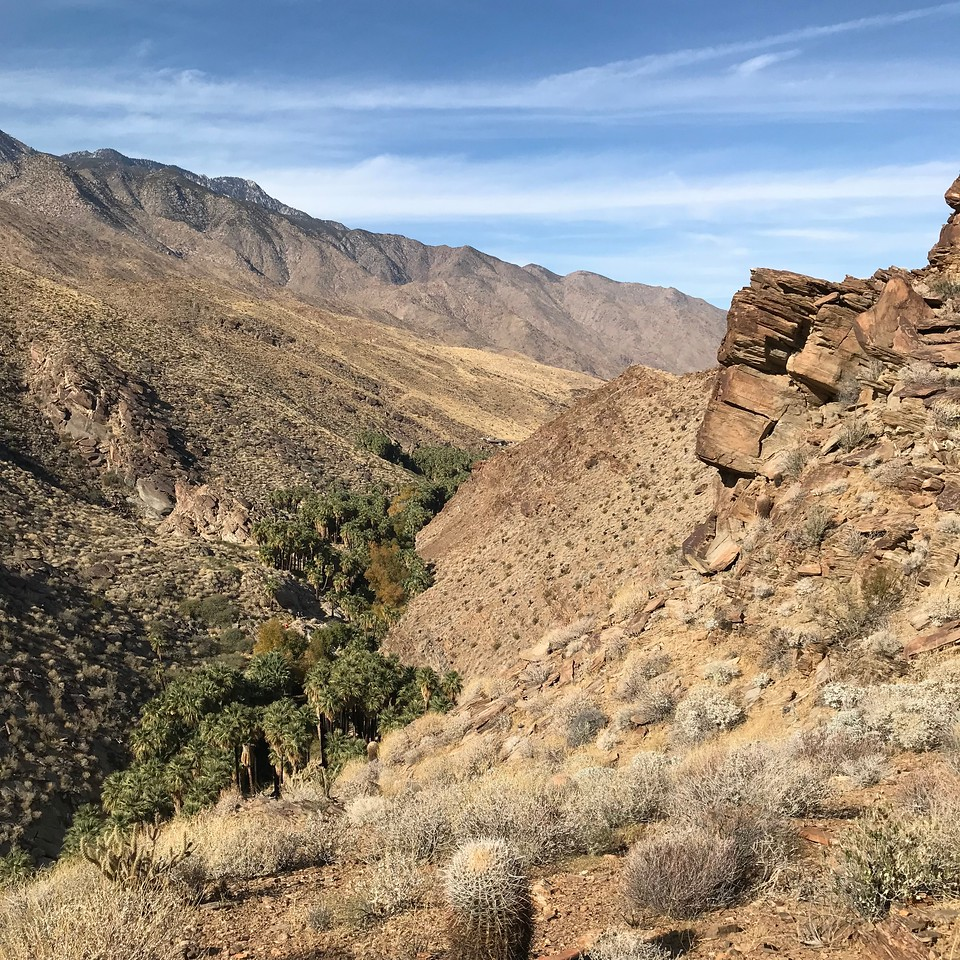 2018-01-01 - Photo 08 - Agua Caliente Indian Canyons