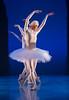Dancing swans.