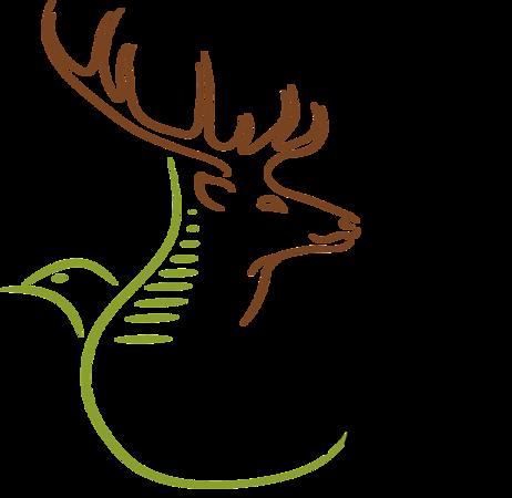 Logo - No Lens, Extended Green Line, Black Italic Writing