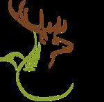 Logo - No Lens, Extended Green Line