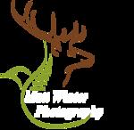 Logo - No Lens, Extended Green Line, White Italic Writing