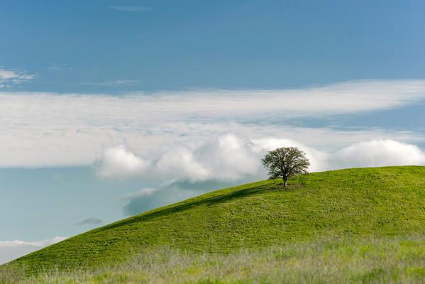 Coast Range Foothills, Glenn County, CA