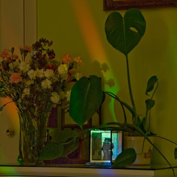 Still Life in My Family Room<br /> 2009