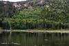 Beaver Dam Pond
