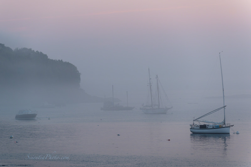 Early Morning at Bar Harbor Near the Town Dock
