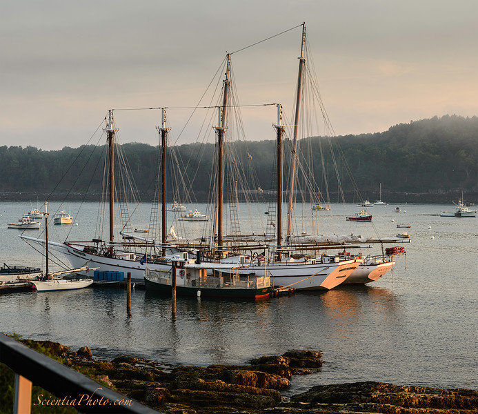 Two Schooners at the Town Dock in Bar Habor