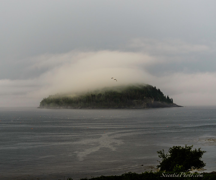 Bald Porcupine Island in Frenchman's Bay from the Balance Rock Inn