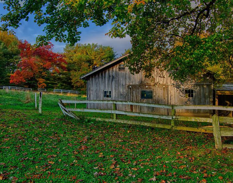 Tanya's Barn (Fork, MD)